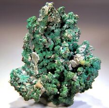"""3.75"""" Native Crystallized Copper Cluster, Morocco! CO333"""