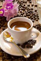 Ybor City Cafe Espresso  -  2 lbs,  Whole Bean Fresh Roasted Dark Roast Coffee,