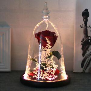 Preserved Fresh Rose Flower Real Flower Rose Gift Ideas for Valentine's Day+ Box
