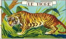Tiger Tigre du Bengale Inde Sibérie Russie India Siberia Russia IMAGE OLD CARD
