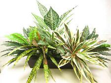 'Faro' Large Artificial Silk Greenery Plant Arrangement with Planter H55cm W95cm