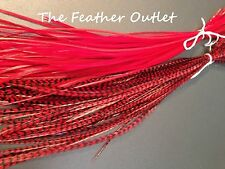 Lot 10 Grizzly Feathers Hair Extensions long thin skinny striped Real Color RED
