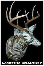 CAMOBUCK ANTLER MOUNTING KIT WINTER MIMICRY FREE SAME DAY SHIPPING NOW $129. 88