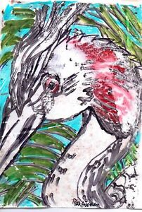 GREAT CRESTED GREBE by RUTH  FREEMAN MIXED MEDIA MEASURES  5  X 7 WITH BACKBOARD