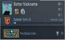 Counter Strike Global Offensive, Global Elite, CS:GO GE