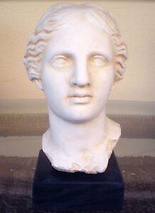 Aphrodite Bust - Goddess Of Love Beauty - Venus