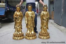 Tibet Buddhism Three Saints of West Sakyamuni Kwan-yin Bronze Buddha Set