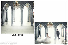 Wedding Thin vinyl backdrop photography background CP photo prop 10X10FT 5953