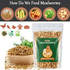 5 lbs Dried Mealworms for Birds Chickens Hamster Fish Reptile Non-Gmo Meal Worms