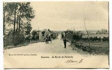 CPA - Carte Postale - Belgique - Tamines - La Route de Falisolle - 1903 (I13072)