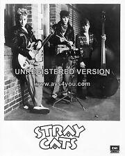 "The Stray Cats 10"" x 8"" Photograph no 13"