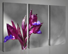 Quadri moderni paesaggi ORCHIDEA VOL VI fiori stampe su tela canvas 130x90