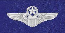 Air Force Command Pilot wings   LP 416