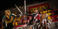 Medieval Times Dinner and Tournament in Toronto - 2 General Admission Tickets