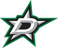 "Dallas Stars NHL Color Die Cut Vinyl Decal Sticker - You Choose Size 2""-34"""