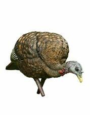 Avian X Feeder Lifelike Collapsible Decoy Lcd Folding Hen Turkey Hunting Decoy
