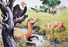 RARE 1974 RANCHO LA BREA TAR PITS ICE AGE ANIMALS MUSEUM COLOR LITHO POSTER OOP