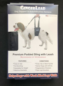 GingerLead Small Male Dog Support & Rehabilitation Harness NEW