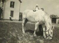 Father Holding Baby on White Horse Farm House 1920s Depression Era Photo