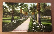 THE PARK AT LONG BEACH, CA early divided postcard c.1913 - palm trees calla lily