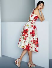 Dolce & Gabbana Floral Poppy & Daisy Print Open Back Dress IT 46 US 10 $2795