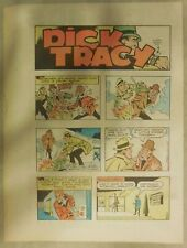 (49) Dick Tracy 1980 Sunday Pages by Chester Gould Tabloid Size Near Complete!