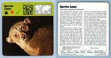Sportive Lemur - Mammals - 1970's Rencontre Safari Wildlife Card