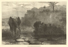 African elephant-shooting by moonlight 1877 antique ILN full page print