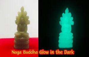 Naga Buddha glow in dark Top Thai Amulet Luminous Jade Relics Carved green stone
