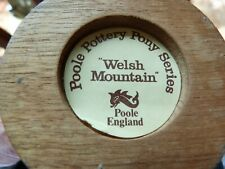 More details for poole welsh mountain pony