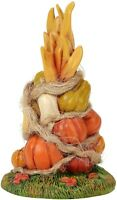 Fall Harvest Autumn Gourds Dept 56 Village Accessories 6006815 Christmas snow Z