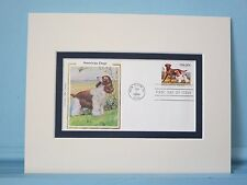 American Dogs - the Cocker Spaniel & First Day Cover of its own stamp