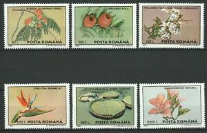 Romania 1995 Flowers 6 MNH stamps