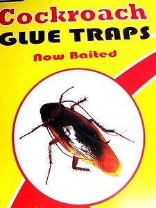 6xsticky cockroach killer/trap