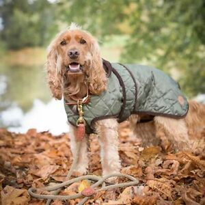 Country Pet Quilted Dog Coat, Navy & Green, XXS - XXL, Free P&P