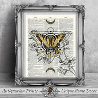 Geometric Butterfly Wall Art on Antique Dictionary Book Page Picture
