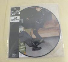 "Atmosphere Lake Nokomis Maxi Single Picture Disc 12"" Vinyl RSD Limited Edition"