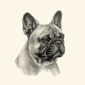 Dog Show Ring Number Clip Pin Breed - French Bulldog Frenchie (Fawn)