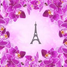 Eiffel -1, Aerografo Airbrush Nail Stencil Unghie Autoadesivo 30 Pezzi