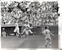 1965 Baseball Wire Photo, Glenn Beckert Chicago Cubs, Felipe Alou, Braves