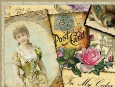 Shabby Vtg Chic Pink Rose Victorian Ebay Compliant Listing Auction Template