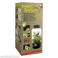 IDEAL FOR EXPLORERS/PROFESSIONALS: LUCKY REPTILE INSECTARRIUM 5 LITRE, IT-5