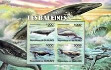 WHALES (Gray/Blue/Humpback/White Beluga) Stamp Sheet #1 of 5 (2011 Burundi)