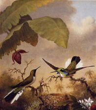 ZWPT254 100% hand-painted two birds landscape decor art oil painting on canvas