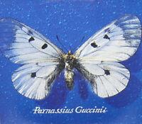 LP 33  Francesco Guccini – Parnassius Guccinii ITALY 2018