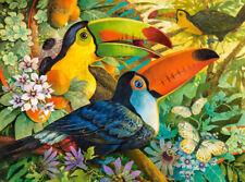 NEW! Castorland Interlude by David Galchutt 3000 piece toucans jigsaw puzzle