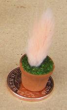 1:12 PEACH colore impianto + POT DOLLS HOUSE miniatura Giardino Fiore Accessorio spe
