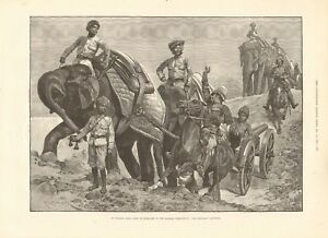 1891 ANTIQUE PRINT - INDIAN ARMY CAMP IN MADRAS PRESIDENCY - ELEPHANT BATTERY