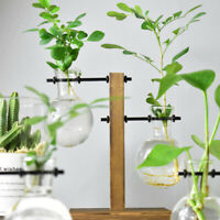 Table Desk Bulb Glass Hydroponic Vase Flower Plant Pot w/ Wooden Tray Home Decor