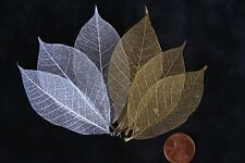 40 Skeleton Leaves Silver Gold Metallic see through leaf Wedding Christmas med